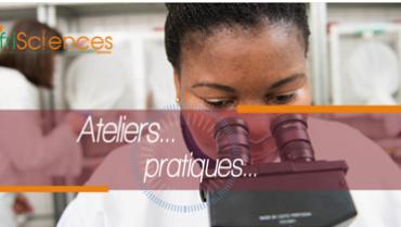 Premier Festival Afrisciences en France