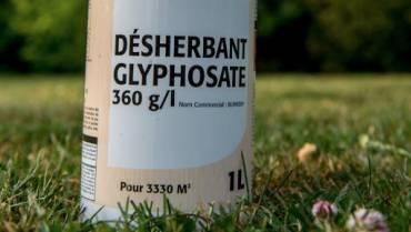 Eclairage scientifique de Mohamed Paul Tossa sur le glyphosate